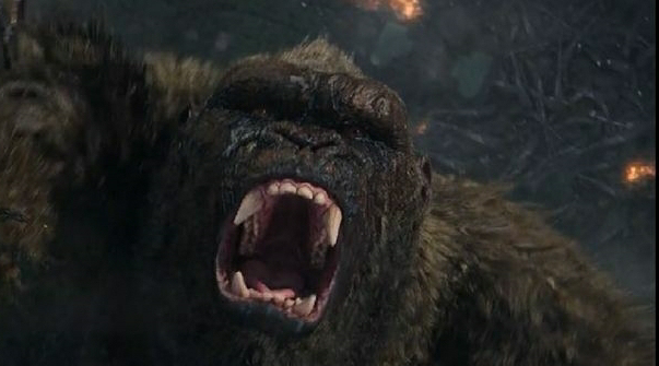 Adam Wingard felt bad for Kong, removed things that were supposed to happen to him!