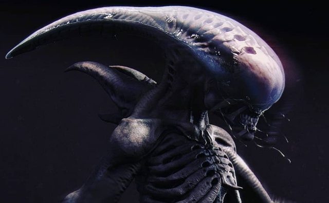 Fan Art Spotlight: Alien Neomorph and Bull Xenomorph concepts!