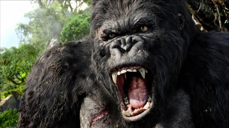 Kong: Skull Island will be spectacular and epic according to Tom Hiddleston!