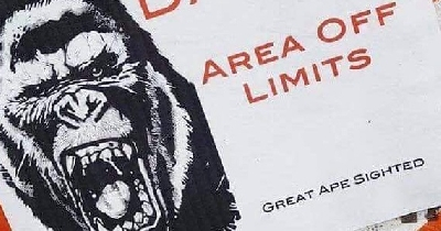 Kong marks his territory as Godzilla vs. Kong filming gears up!