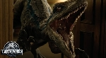 Blue vs. Indoraptor in latest TV spot for Jurassic World: Fallen Kingdom!