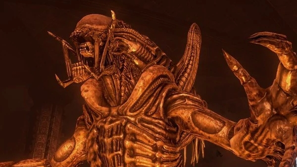 The History and Future of AVP Games