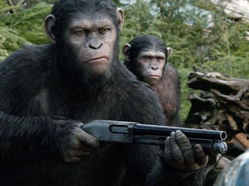 War for the Planet of the Apes has a new synopsis!