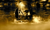 Riddick - Underwater Assassin