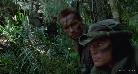 Predator - They Came Through Here