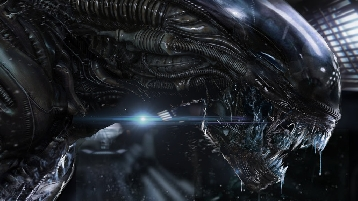 Alien Xenomorph Fan Art