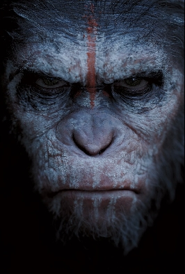 Dawn - Apes Tribal Posters