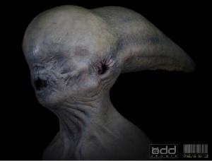 Neomorph proof of concept head