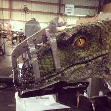 Possible first look at JW raptor