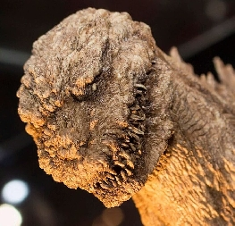 Shin Godzilla close up.