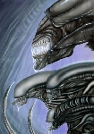 Xenomorph Hierarchy Fan Art