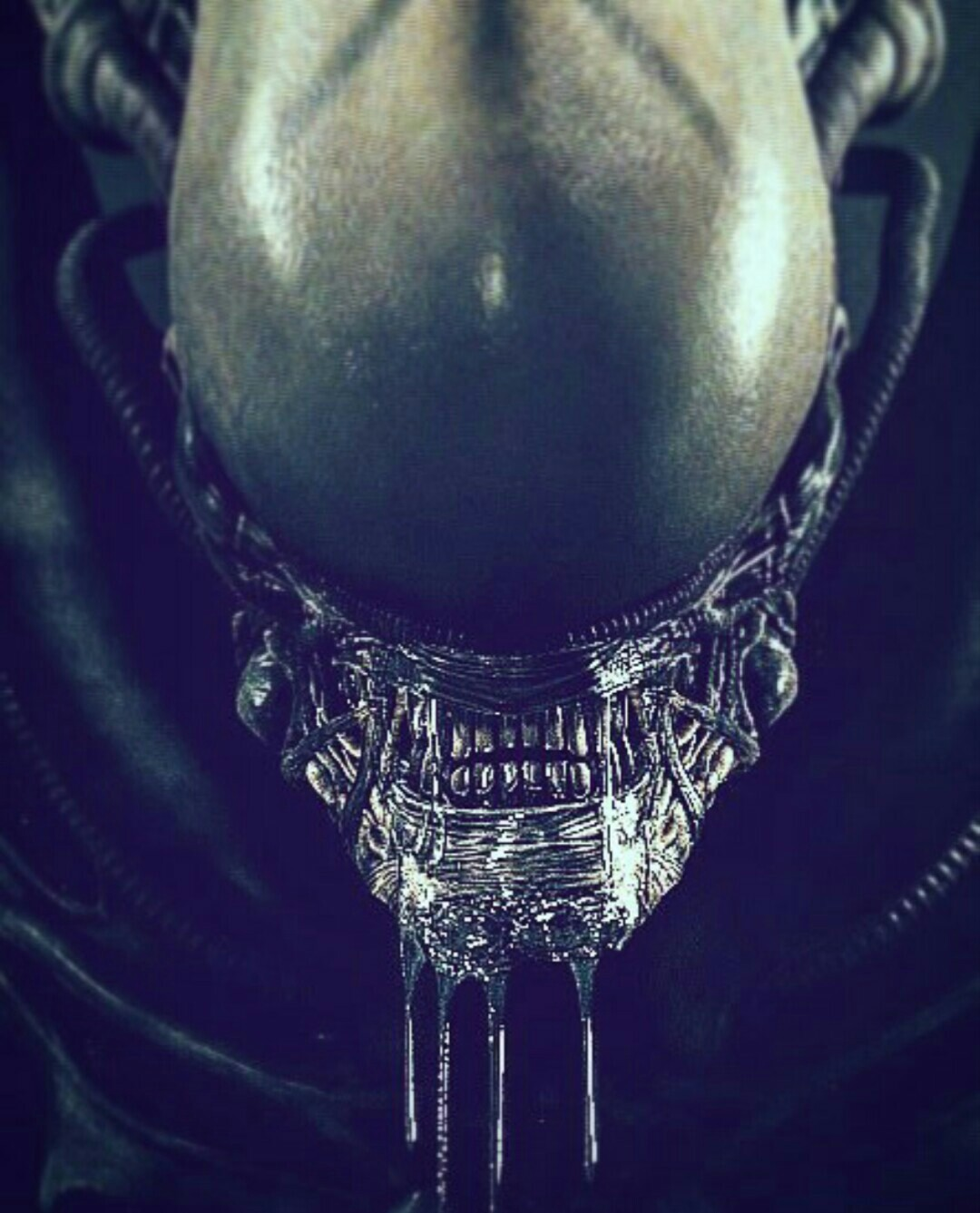 Alien: Covenant filming culmination celebratory piece