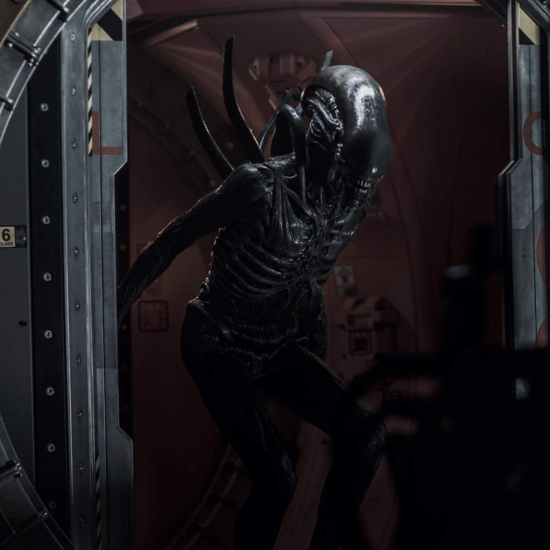 Alien: Covenant Xenomorph suit
