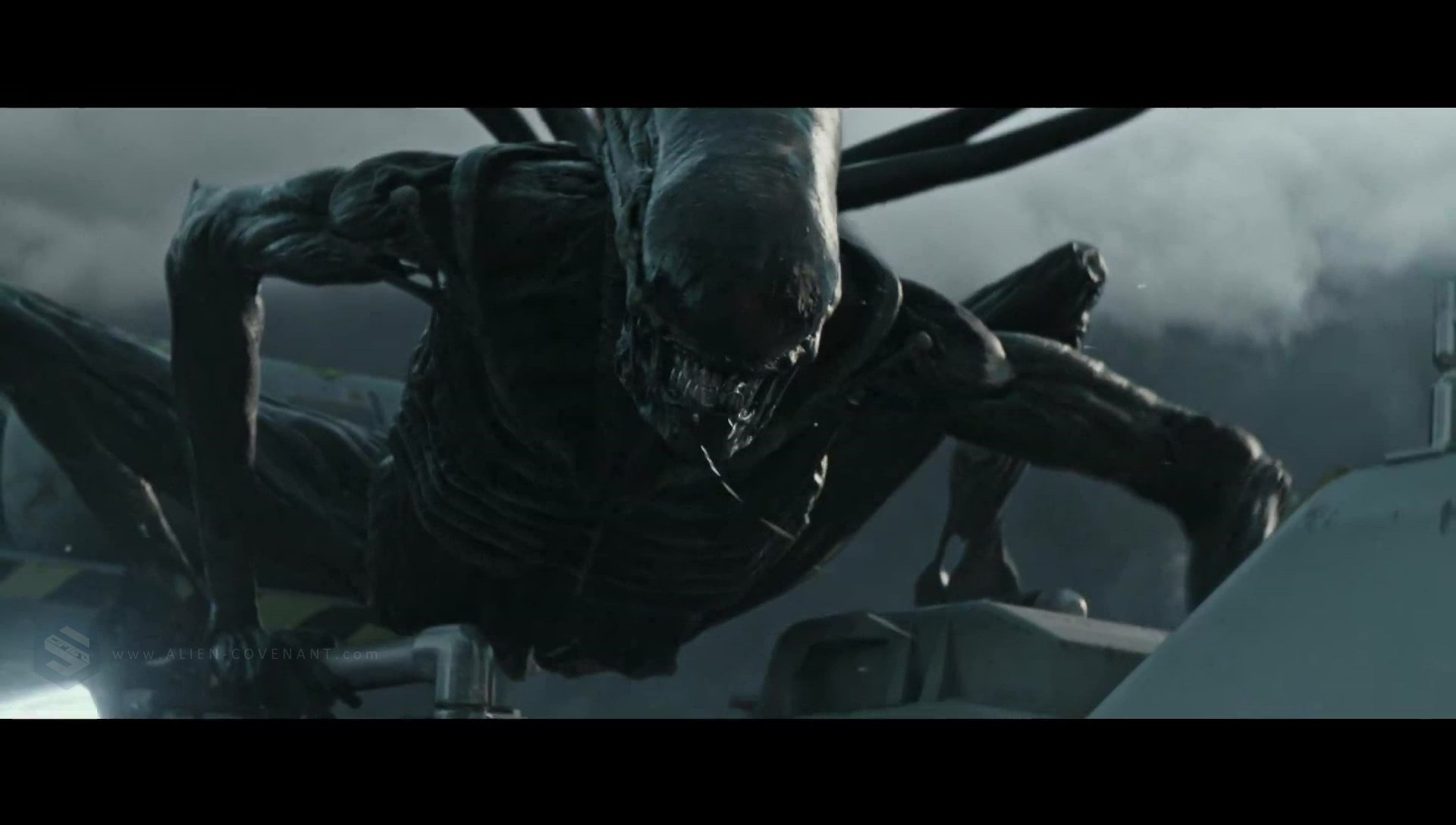 The Alien: Covenant Xenomorph / Protomorph