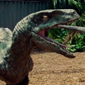 Comparing Velociraptors from Jurassic Park, The Lost World: Jurassic Park, Jurassic Park 3 and Jurassic World