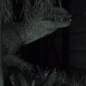 Watch this epic fan-made Indominus Rex Paddock security camera footage video!