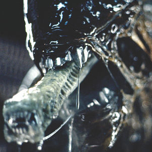 Alien 5 is NOT being held back by Ridley Scott's Prometheus 2