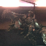 New Transformers: Age of Extinction Promotional Banner Leaked! (Exclusive)