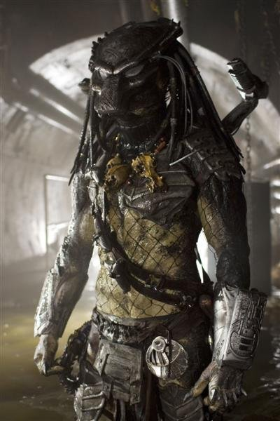 Top 5 Favorite Predators