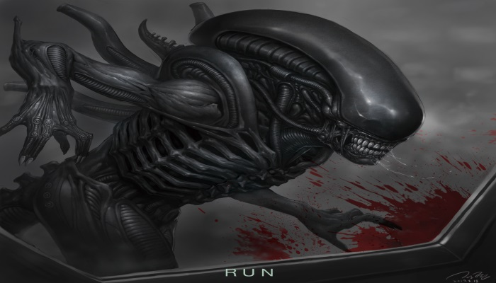 What is a Xenomorph? My hypothesis on the classification of the species.