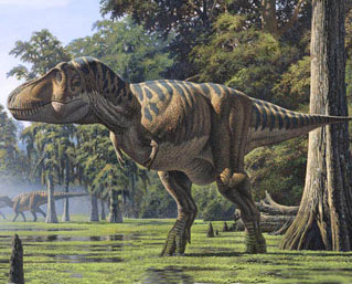 Researchers now believe T.rex was too heavy to run!