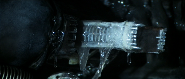 What is the host origin of the Xenomorph's inner jaw teeth tongue?