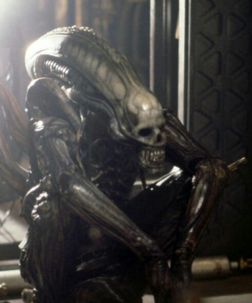 Translucent BigChap Director's Cut ALIEN Blu Ray Coming for Next Year's LV426Day!?