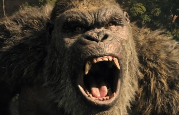 Should the MonsterVerse continue after Godzilla Vs Kong?