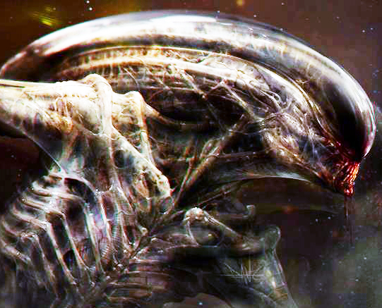 Dane Hallett's Xenomorph Facebook Cover Photo
