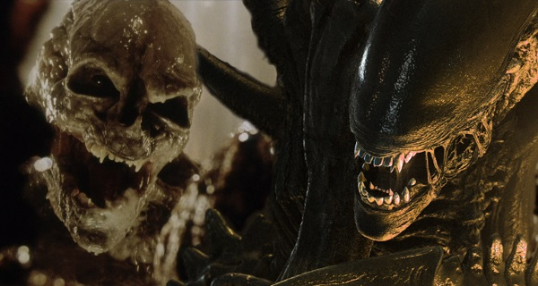 Why didn't the Xenomorphs attack the Newborn in Alien: Resurrection after it killed the Queen?