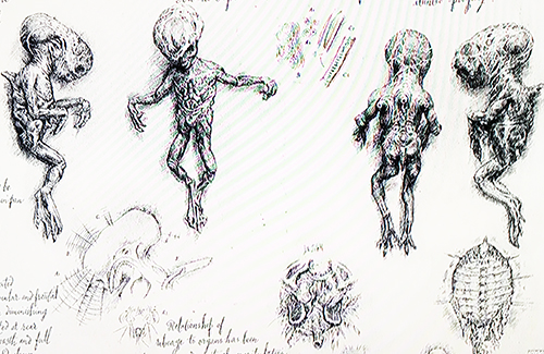 Engineer Infant Experiments in David 8's Drawings