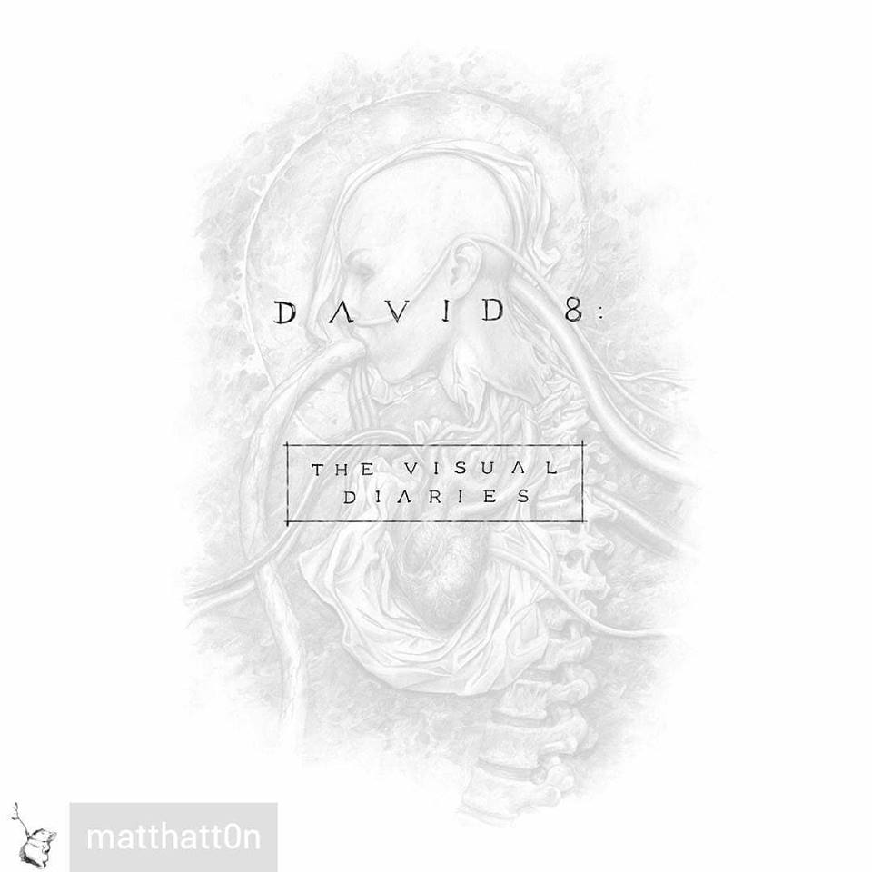 David 8: The Visual Diaries