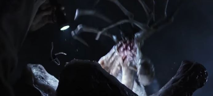 Dog Tags in a Facehugger?