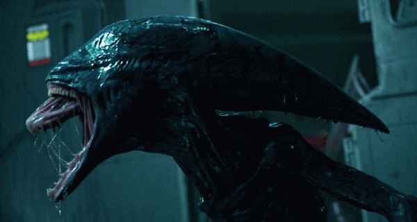 [Spoiler] Xenomorph sketch and Deacon Alien spotted in leaked Alien: Covenant photos!
